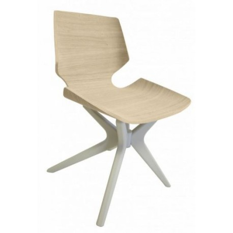 Chaise bois design