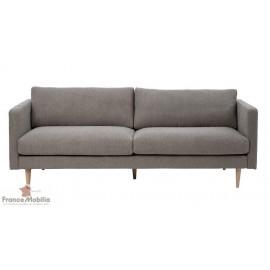 Canapé viieux gris moderne design