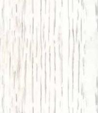 Chene-blanchi